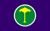Bandeira da cidade de São Carlos - SP